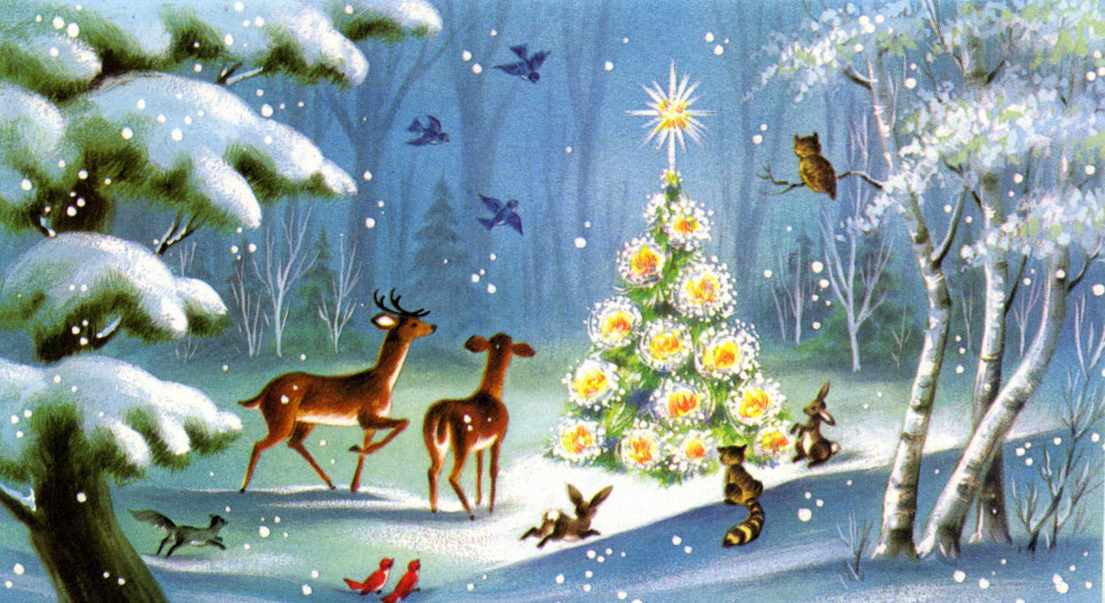Սուրբ Ծնունդի ծառը