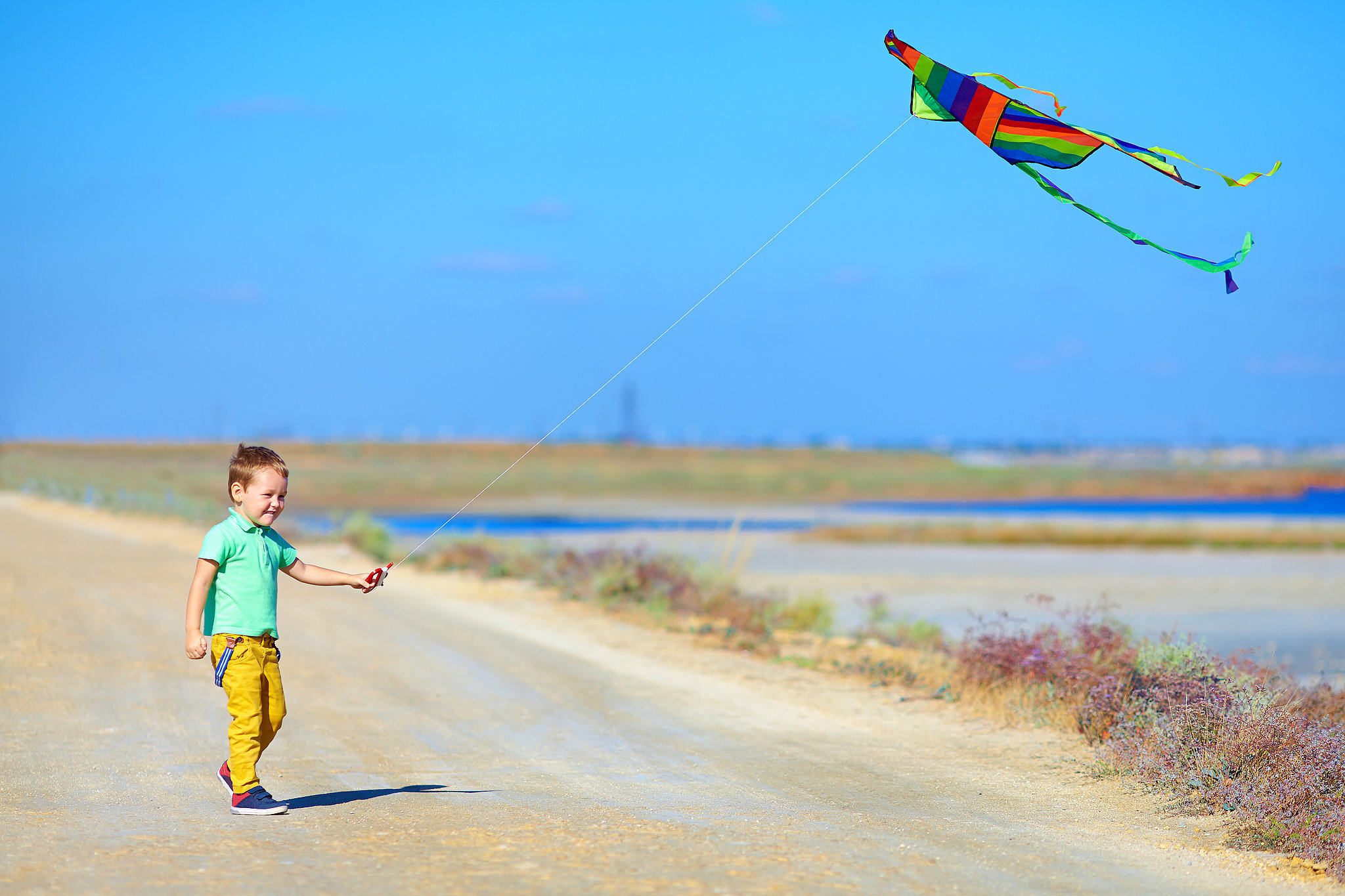 Go-Fly-Kite