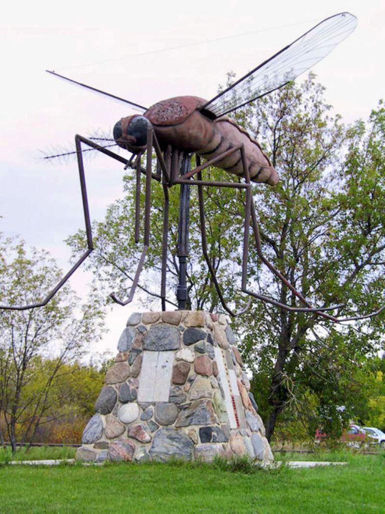 Մոծակին նվիրված արձան Կանադայում: Մի օր Հայաստանում մոծակին նվիրված ավելի գեղեցիկ արձան կլինի...