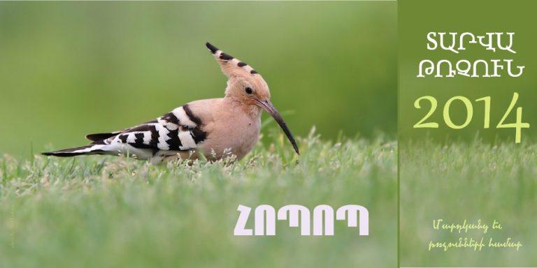 Տարվա թռչուն