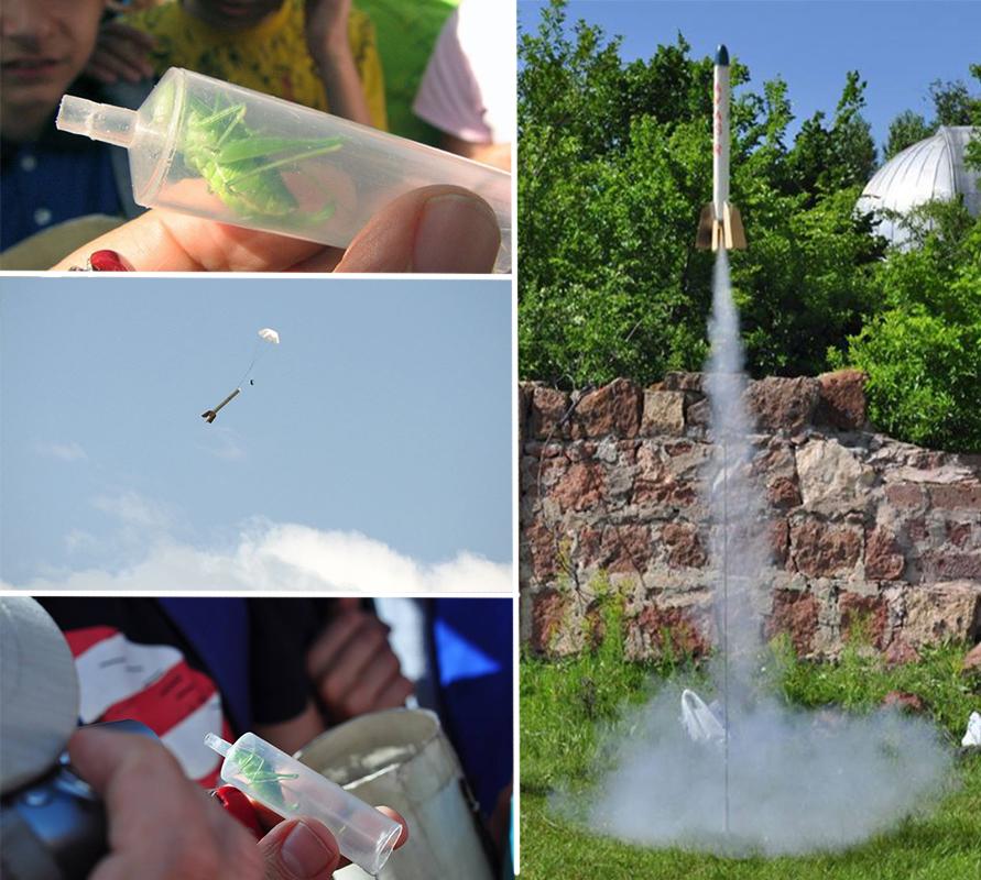 Թռչող սարքերի փորձարկումներ: Հրթիռի «օդաչուի» դերում մորեխն է՝ հատուկ իր համար նախատեսված խցիկում: Հրթիռը թռչում է երկինք, ապա բացվում է պարաշյուտն ու հրթիռը վայրէջք է կատարում՝ ողջ ու առողջ ներքև իջեցնելով օդաչու մորեխին: