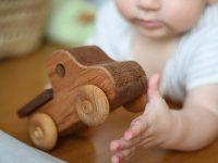 Մոնտեսսորի խաղալիքներ